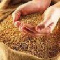 Мука пшеничная высший сорт.