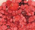 Начинки фруктово-ягодные. Наполнители фруктово-ягодные.