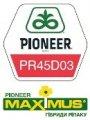 Гибриды озимого рапса ПР45Д03/PR45D03