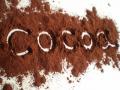 Какао-порошок натуральный для кондитерского производства