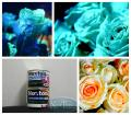 The shining paint for flowers. The shining fresh and artificial flowers