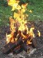 Производим топливные брикеты, изготовленные из чистых древесных опилок...