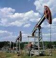 Оборудование нефтегазовое