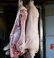 Свинина, полутуши, тримминг, разделка, субпродукты