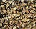 Семена гречки (гречихи), сорт Елена