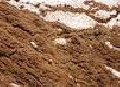 Смеси песчано-глинистые, подсыпка с глиной, При больших обьемах скидки! Низкие цены отличное качество!!!!