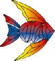 Small fish color