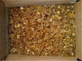 Kernels of walnuts mix amber