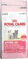 Корм для котят от 4 до 12 месяцев Royal Canin Kitten 36