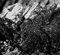 Концентрат угольный