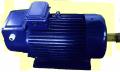 Patlama koruyucu elektrik motorlar, vinç-çelik serisi MTN, MTF, MTKN, 4MTK, 4MTM, DMT, AMT, 4MT