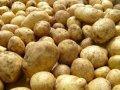 Продам Картошку отличного качества