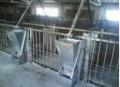 Оборудование для ферм свиноводства