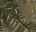 Таль ручная цепная -0,5т (неликвиды)
