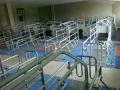 Оборудования для свиноводства под заказ и заказу изготовителя, станки для свиней, поилки, ремонт и реконструкция свиноферм в Украине