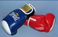 Товары для боевых видов спорта (Перчатки для бокса)