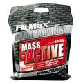 FitMax® Geyner Mass Active, 5.0kg (chocolate, vanilla, strawberry)