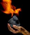 Уголь каменный  Марка Д (длиннопламенный)