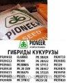 Семена кукурузы П9175 / P9175