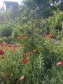 Решетка садовая (пергола)