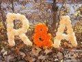 Буквы из помпонов, бумажных цветов. Бумажный декор от производителя