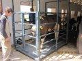 Весы для животных 1250х2000
