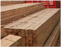 Timber under the order, Ukraine, expor