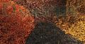Мульча декоративная Black  Артикул:МД70-Чорн