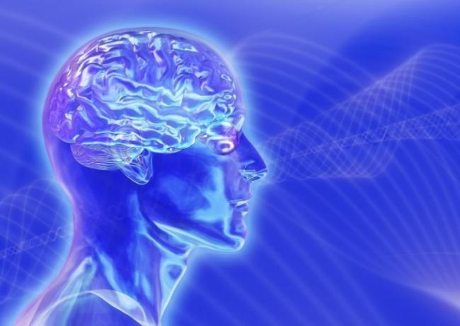 программа нейродоктор