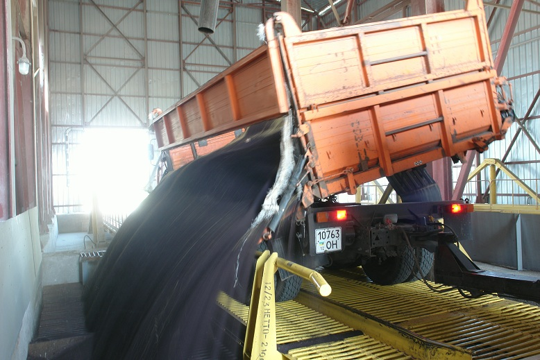 Экспорт трейдер