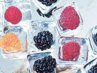 Сильверстоун инвестмент,  ООО (Замороженные и свежие ягоды, овощи, фрукты)