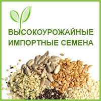 Сernel Global Holding NV (кернел глобал холдинг), ООО, Одесса