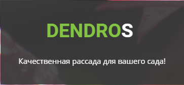 Проект DendroS, СХ, Ямполь