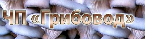 Грибовод, ЧП, Одесса