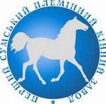 Первый Сумской племенной конезавод, ЧАО, Лебедин