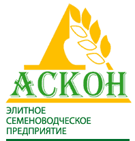 Аскон, ЧП, Акимовка