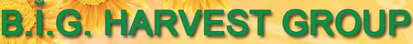 Бета Агро Инвест, МЧПКП Бета (B.I.G. Harvest Group), ООО, Ясиноватая