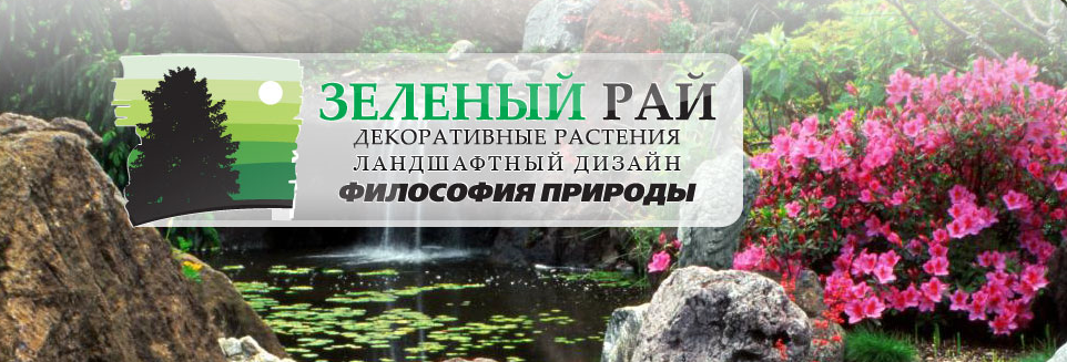Зелёный рай ландшафтное бюро, Компания, Авангард