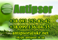Antipsor, FOP, Київ