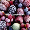 Полюхович А.И, ФОП