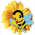 Funny  bee, Lvov