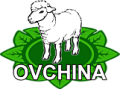 Ovchina, ChP, Ivano-Frankovsk