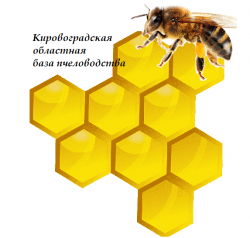 Кіровоградська обласна база бджільництва, ПП