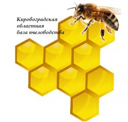 Кировоградская областная база пчеловодства, ЧП