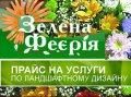 Зеленая феерия, ЧП, Киев