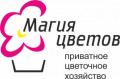 Geometriya sada, ChP, Нерубайське
