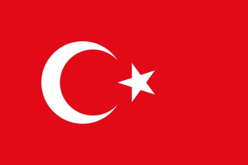 Заказать Перевод на турецкий язык, с турецкого