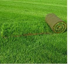 Заказать Укладка рулонных газонов