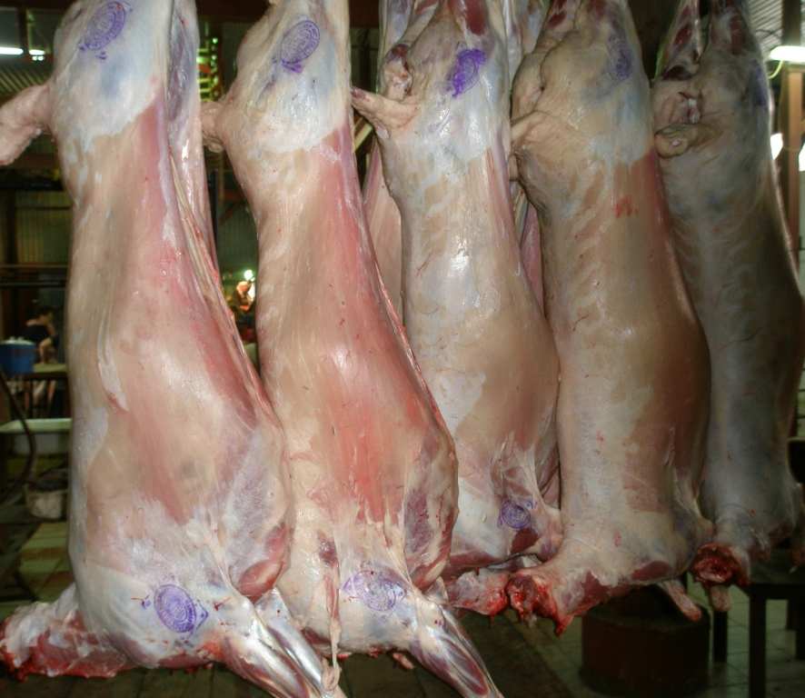 Заказать Мясо баранина, баранина оптом, доступные цены на баранину.