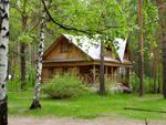 Заказать Отдых в сосновом лесу и на берегу озера (пикник, рыбалка, катание на лодке)